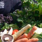 Real Food Box Seasonal Veg Box