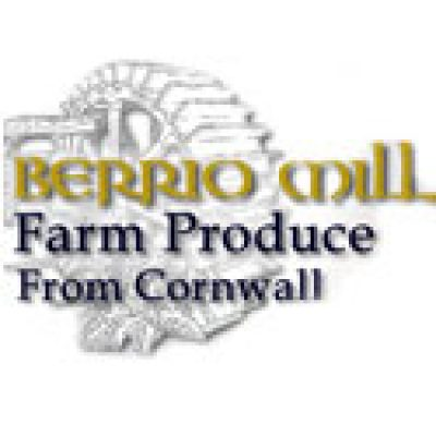 Berrio Mill Foods