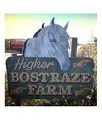 Higher Bostraze Farm
