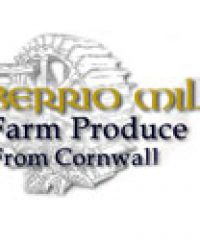 Berrio Mill Foods