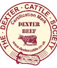 Dynamic Dexters