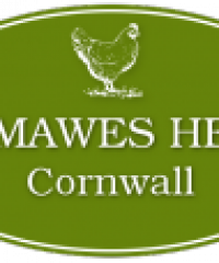St Mawes Hens