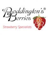 Boddington's Berries
