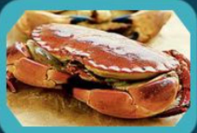 Cornish Bay Seafoods