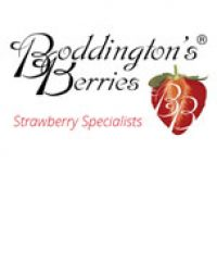 Boddington's Berries