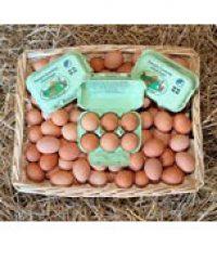 Daveys Cracking Good Eggs